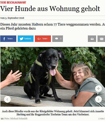 "05. September | Gadebuscher-Rehnaer-Zeitung | ""Vier Hunde aus Wohnung geholt"""